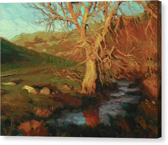 Countryside Canvas Print - Close Of Day by Steve Henderson