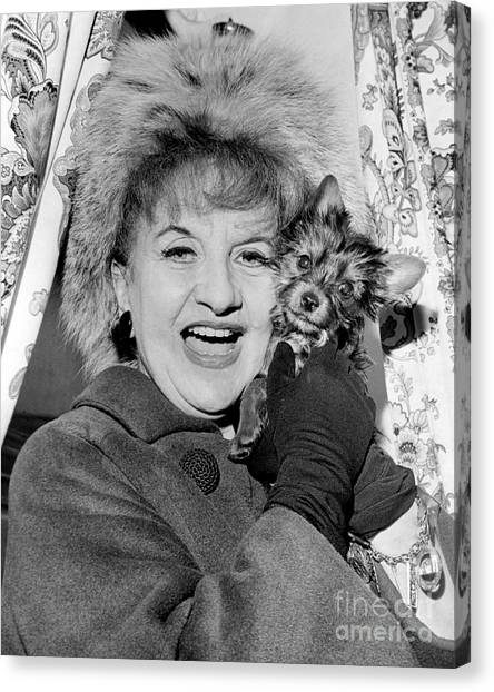 Elizabeth Warren Canvas Print - Close Up Of Hermione Gingold With Yorkshire Terrier. 1965 by Barney Stein