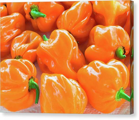 Closeup Of Fresh Chillies Habanero Orange Canvas Print