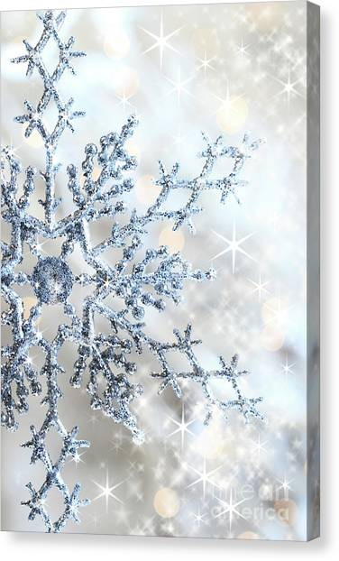 Closeup Of Snowflake Canvas Print