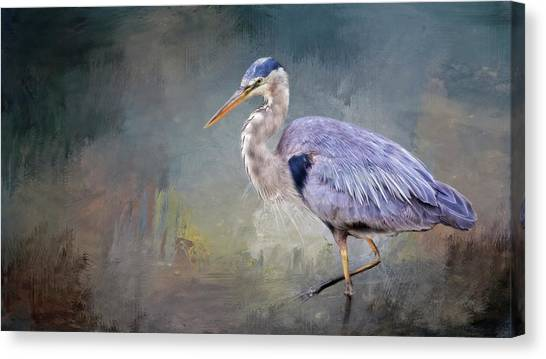 Closing-in, Great Blue Heron Canvas Print