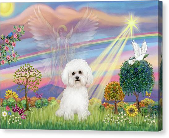 Cloud Angel And Bichon Frise Canvas Print