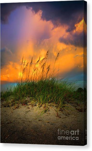 Seagrass Canvas Print - Cloud Colors by Marvin Spates
