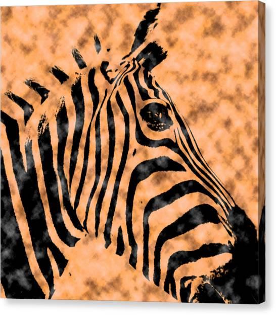 Cloud Face Zebra Canvas Print
