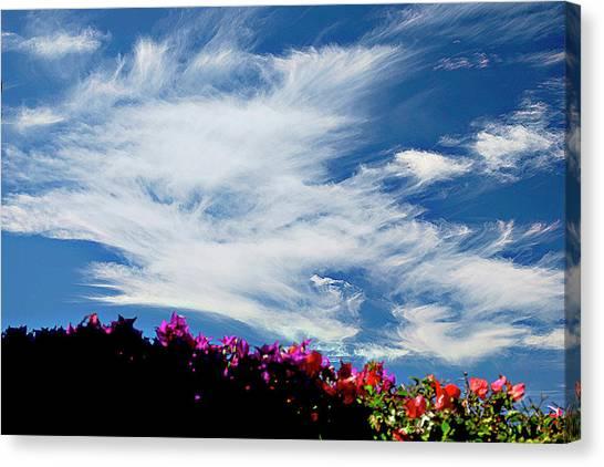 Cloud Patterns Canvas Print