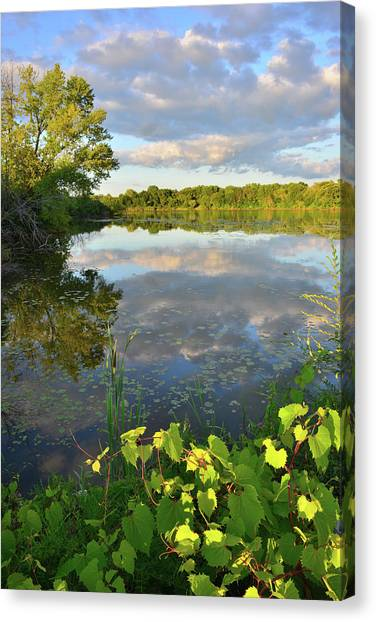 Clouds Mirrored In Snug Harbor Canvas Print