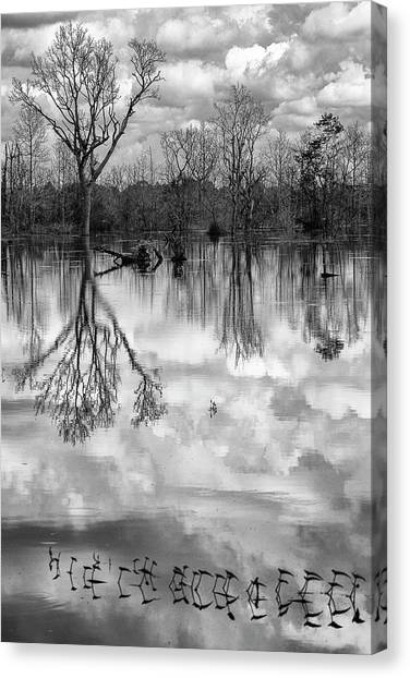 Cloudy Reflection Canvas Print