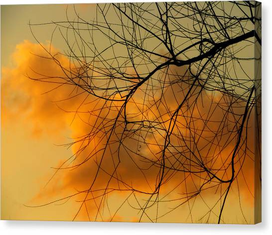 Cloudy Silhouette Canvas Print by Dottie Dees