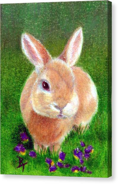 Clover Aceo Canvas Print by Brenda Thour