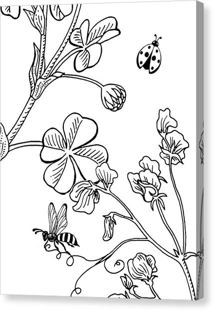Clover Canvas Print - Clover Sweet Pea Ladybug And Bee Drawing by Irina Sztukowski