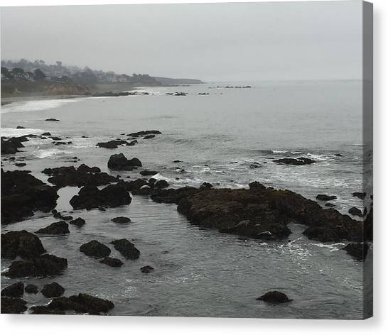 Coastal Fog Canvas Print