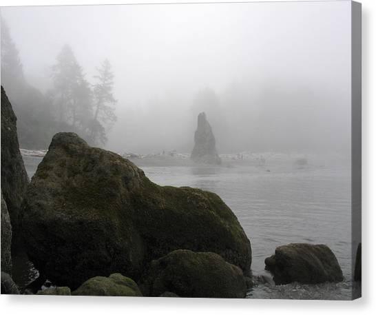Coastal Fog Canvas Print by Ty Nichols