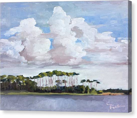 Coastal Serenity Canvas Print by Chris Rice