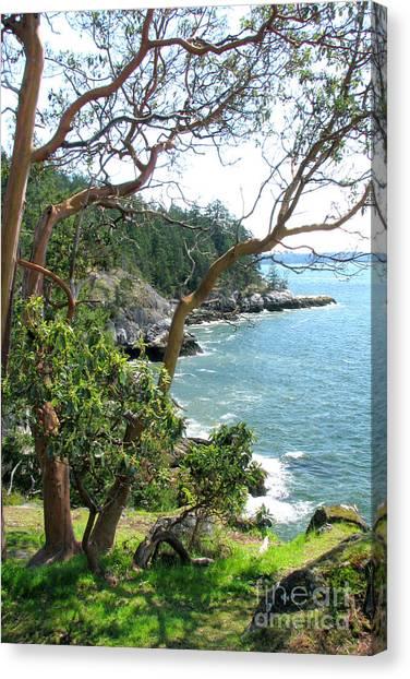Coastal Shores Canvas Print