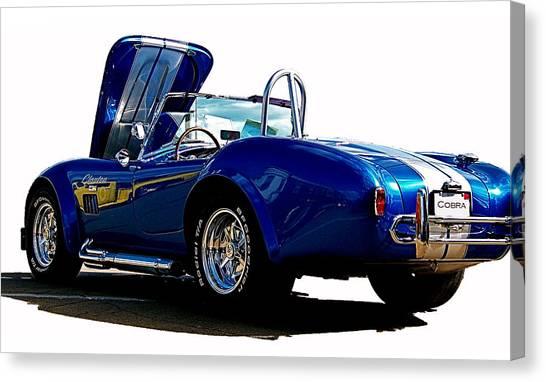 Cobra 427 Canvas Print