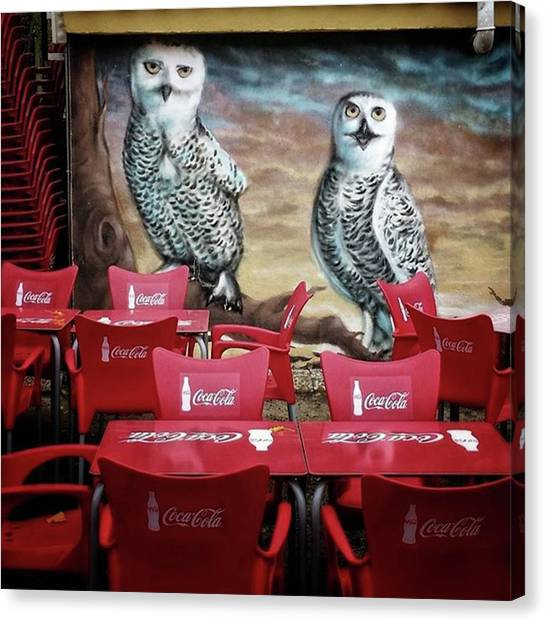 Bar Canvas Print - Coca-cowls #graffiti #birds #painting by Rafa Rivas