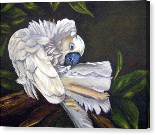 Canvas Print - Cockatoo Preening by Anne Kushnick