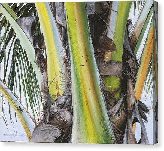 Coconut Canvas Print - Coconut Branches by Wendy Ballentyne