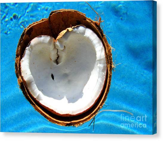 Coconut Heart Canvas Print