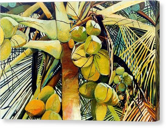 Coconuts I Canvas Print