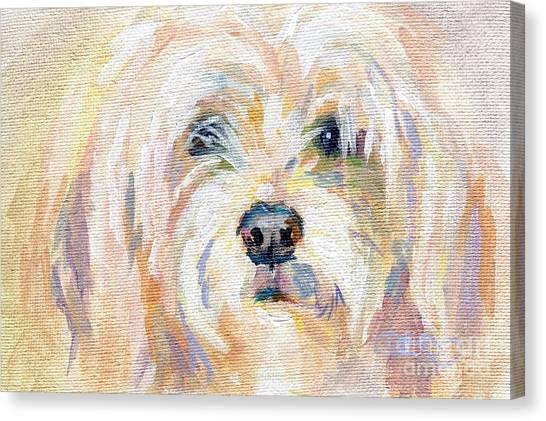 Lavendar Canvas Print - Cody Dog by Kimberly Santini