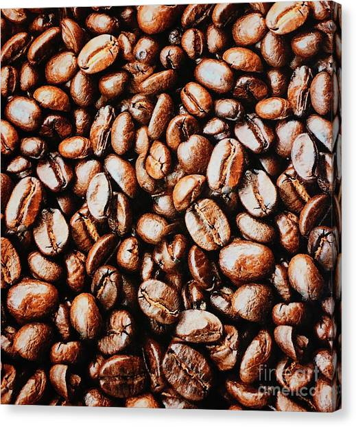 Coffee Plant Canvas Print - Coffee Beans Waiting For The Grind C003 by Jor Cop Images