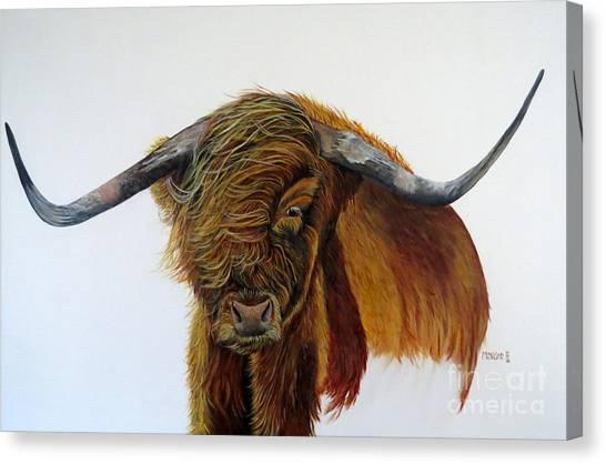 Coinneach  Canvas Print