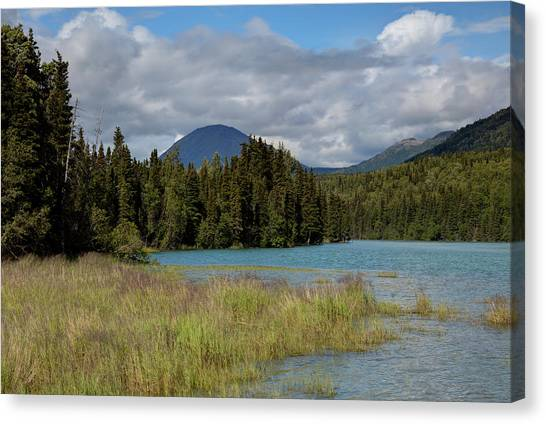 Cold River Marsh Canvas Print