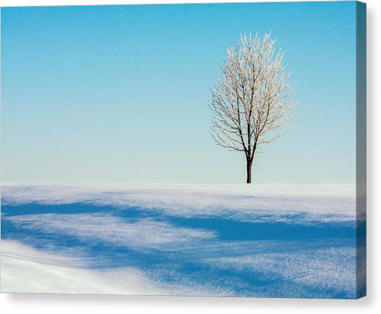 Hoarfrost Canvas Print - Cold Snap by Todd Klassy
