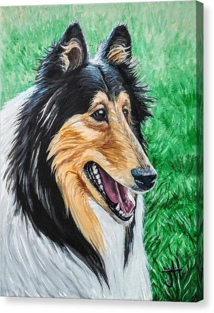 Canvas Print featuring the painting Collie by Jennifer Hotai