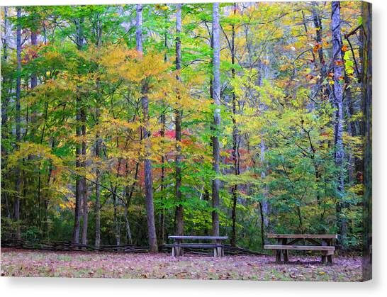 Color Benches Canvas Print