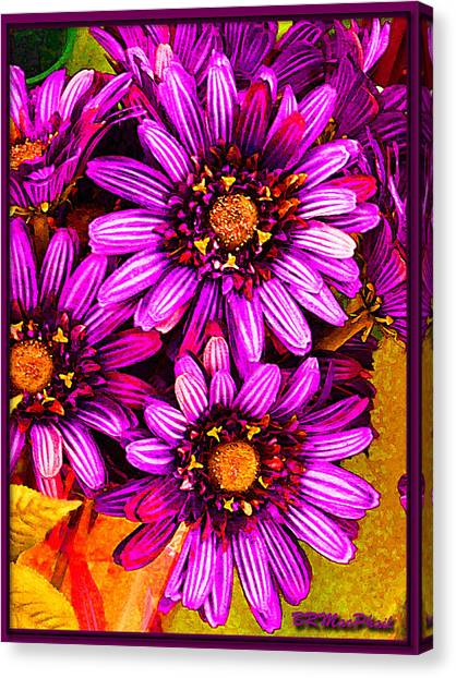 Color Bright Canvas Print