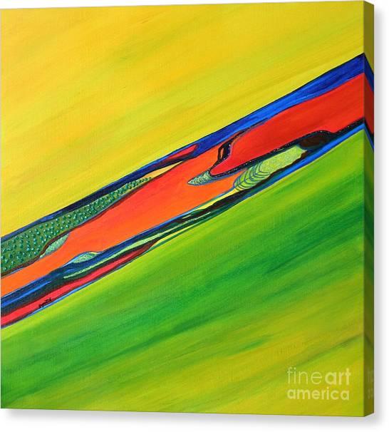 Color I Canvas Print