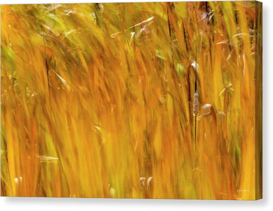 Canvas Print featuring the photograph Color Of Wind by Leland D Howard