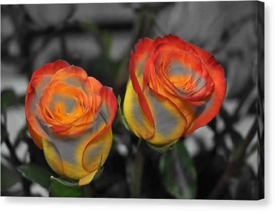 Color Tips Canvas Print