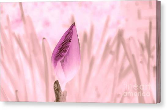 Color Trend Flower Bud Canvas Print