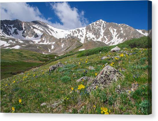 Colorado 14ers Grays Peak And Torreys Peak Canvas Print