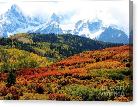 Colorado Autumn 2016 San Juan Mountains  Canvas Print