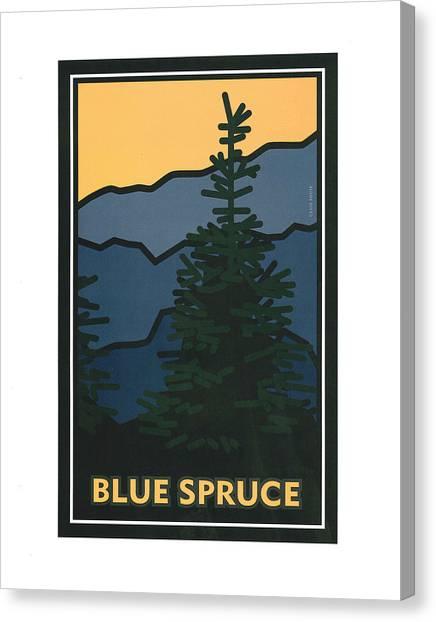 Colorado Blue Spruce Canvas Print