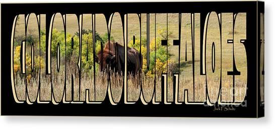 University Of Colorado Canvas Print - Colorado Buffaloes Name  9236 by Jack Schultz