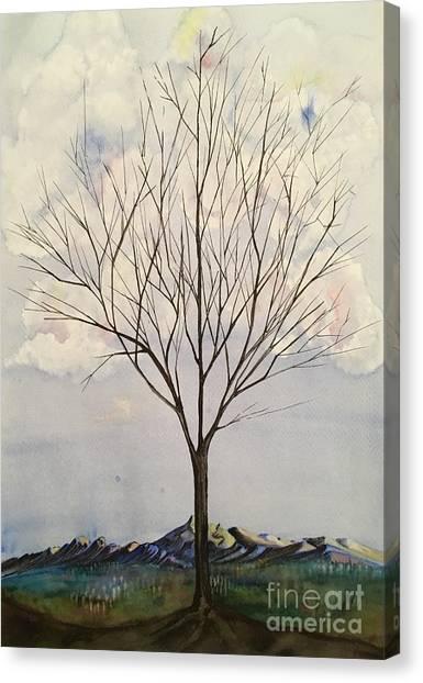 Colorado Cottonwood Canvas Print