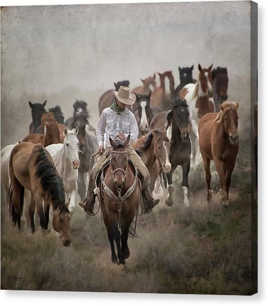 Colorado Cowboy Canvas Print