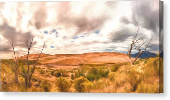 Colorado Dunes Canvas Print