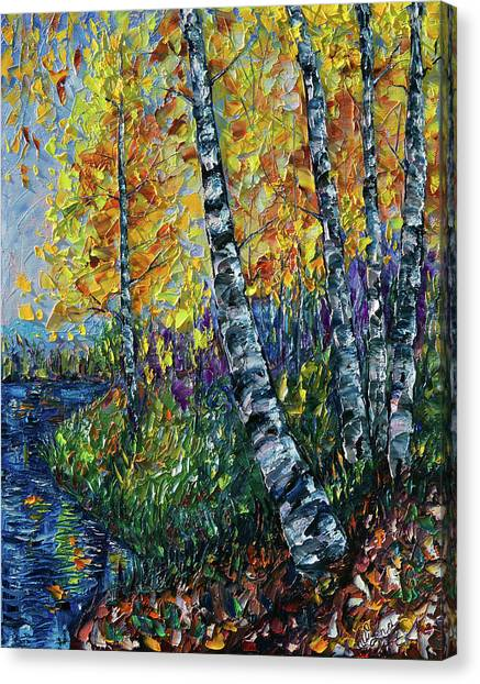 Glimpses Of Colorado Fall Colors Canvas Print