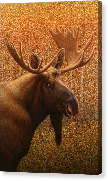 Colorado Canvas Print - Colorado Moose by James W Johnson