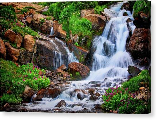 Colorado Mountain Stream, Indian Peaks Wilderness Canvas Print