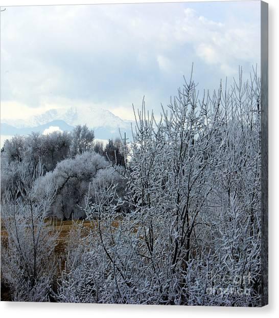 Colorado Springs Winter Canvas Print
