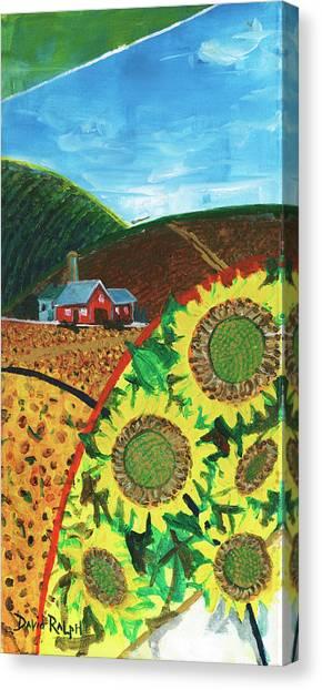 Colorado Sunflowers Canvas Print
