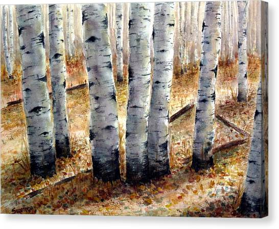 Colorado Trail Canvas Print