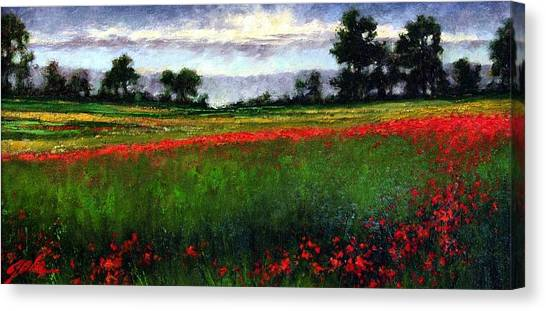 Colorburst Canvas Print by Jim Gola